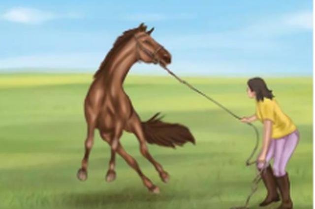儿子出门放马未归 原是马儿受惊逃跑 他从修文追到开阳