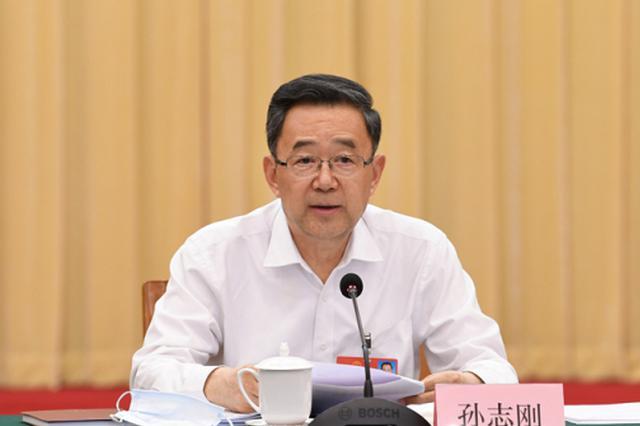 贵州代表团审查计划报告和预算报告 孙志刚发言 谌贻琴参加