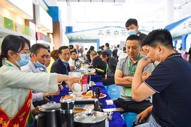 聚焦茶博会 世界听见了贵州茶的声音