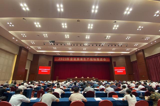 贵州:全力以赴抓好粮食生产 千方百计恢复生猪生产