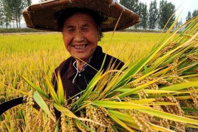 乌蒙山农民的笑脸