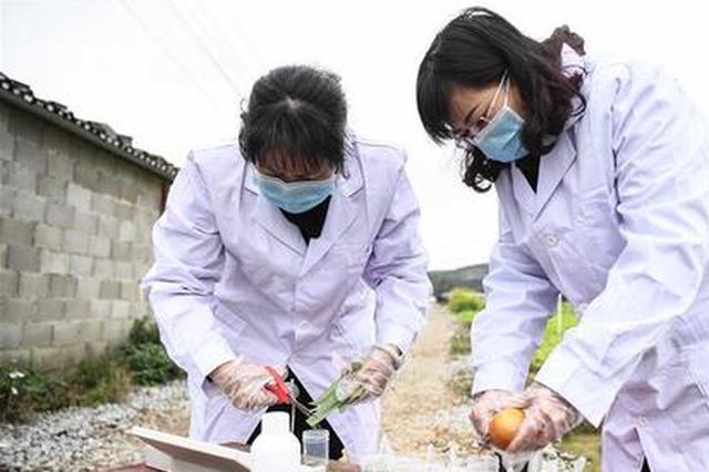 贵阳全力推进国家级食品安全示范城市创建工作