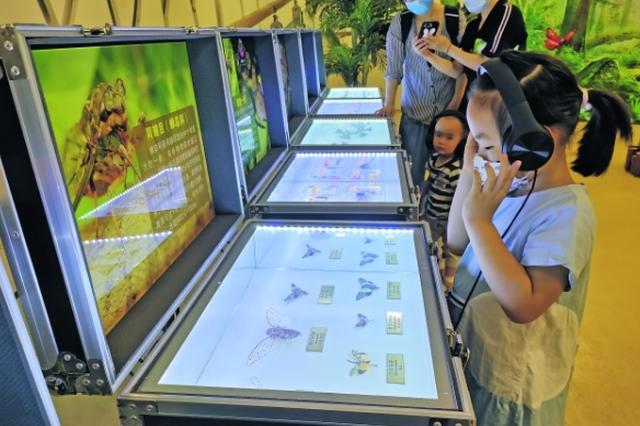 贵州多彩昆虫世界科普展开展