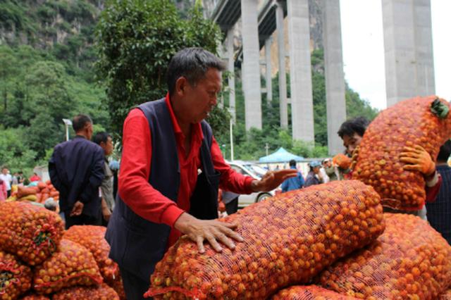 发挥流通型龙头企业、农村经纪人队伍和农村电商作用 助推贵州农产品走出大山走向世界