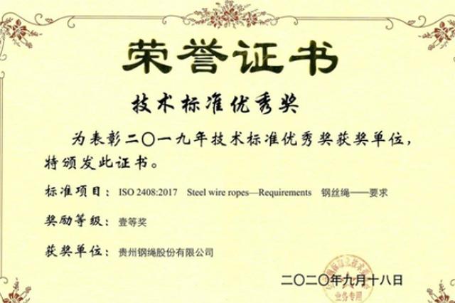 贵州钢绳主导修订的钢丝绳国际标准获全国大奖