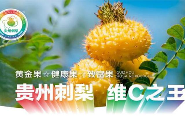 """拼多多""""拼了""""!助推贵州刺梨产业发展"""