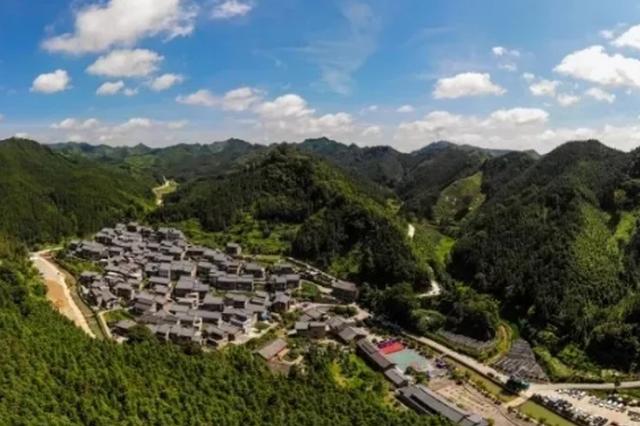 册亨县秧坝镇福尧村打造林下菌药产业模式
