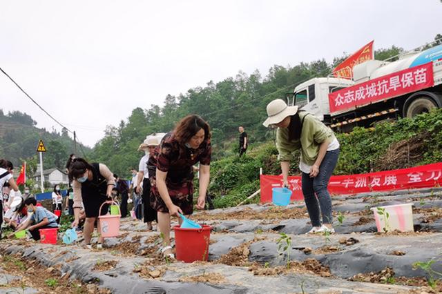 紫云县:打造服务型机关党组织