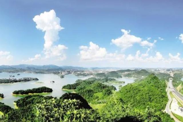 """清镇:擦亮营商环境""""金招牌"""""""