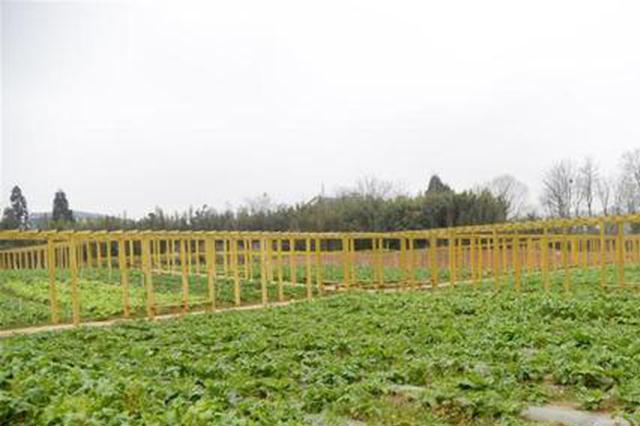 清镇市:春耕备耕早 农业生产忙