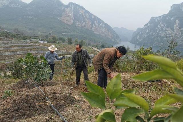 贵阳:让乡村更美产业更旺农民生活更美好