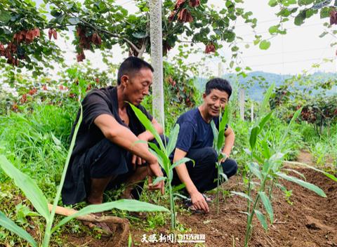 赵贵山(右)与村民一起共谋产业发展