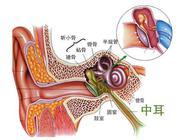 感冒易诱发中耳炎?教你2招来预防中耳炎!