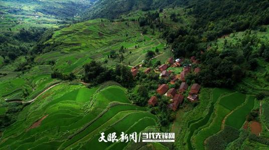 """家住""""森林城"""",共筑""""公园省""""!贵州大力开展森林城市体系建设"""