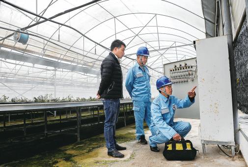 工作人员走进农业种植基地,开展春耕安全用电检查,为企业生产保驾护航。