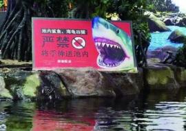事发水族馆。