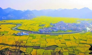贵州10地入选农业强镇创建名单