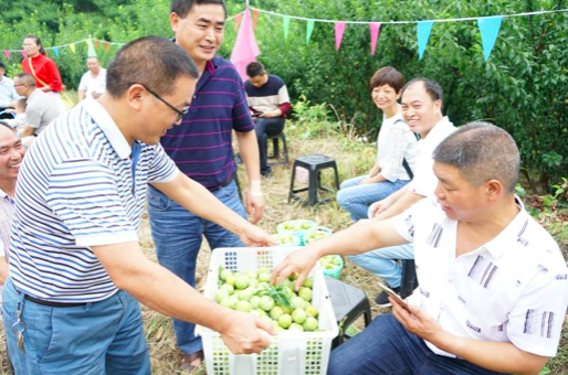 紫云县委常委 宣传部部长彭传刚亲自推介火花冰脆李,邀请游客品尝
