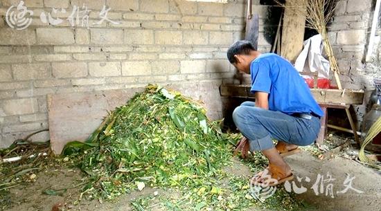 修文县:扶贫小额信贷让贫困户发展如鱼得水