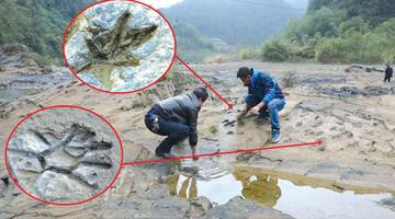 河床巨石上 发现200个神秘印记