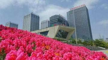 贵阳高新区3家孵化载体被认定2021年市级科技企业孵化器