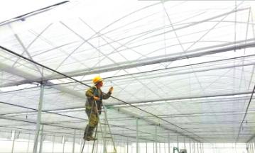 清镇投资8.47亿建蔬菜保供基地70