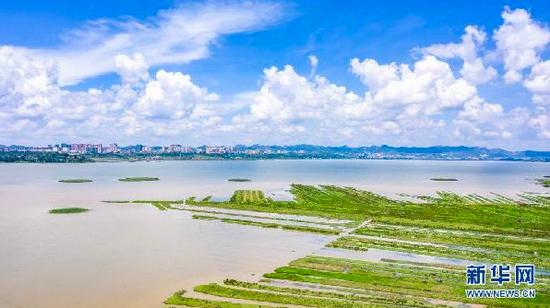 """国家生态文明试验区贵州""""绿色经济""""持续增长"""