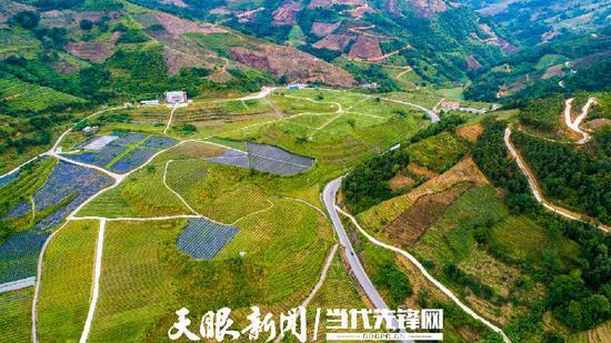 贵州省农科院果树科学研究所热带亚热带水果科技示范园