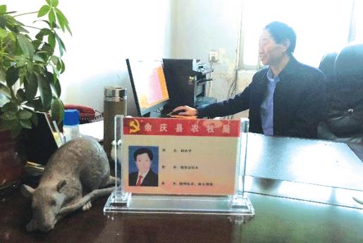 杨再学的办公桌上,是老鼠雕塑。