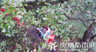 3女子爬山探险被困半山腰