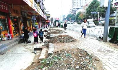 一排行道树被挖,路面很糟糕。