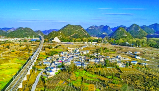贵安高峰镇王家院村:小葡萄串起大产业