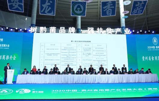 贵州省食用菌产业招商推介会现场签约金额66.9亿元,黔西南签约资金29.31亿元