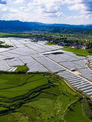 贵州省发改委14项举措推进农业现代化