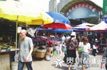 陽明花鳥市場人頭攢動,經營不受影響。