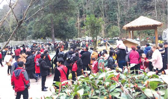 黔灵山公园游人如织。