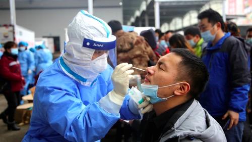 修文县开展冷冻食品从业人员及环境采样工作