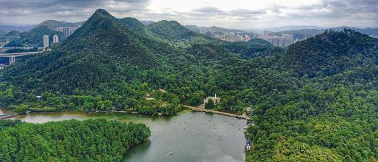 黔灵山公园内黔灵湖美景。 记者邱凌峰 摄