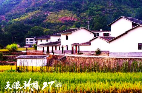绿色的村庄:册亨县秧兵村