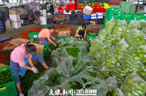 贵阳农产品物流园扶贫专区车水马龙,各种时令蔬菜琳琅满目