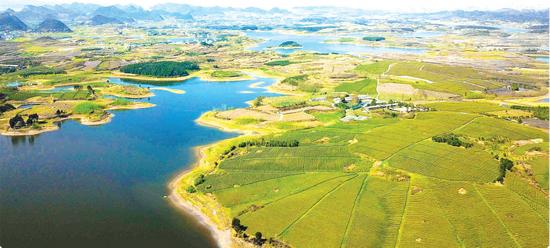 清镇芦荻哨大力发展生态果蔬种植,打好产业扶贫硬仗。这是航拍的芦荻哨菜园,美如仙境。