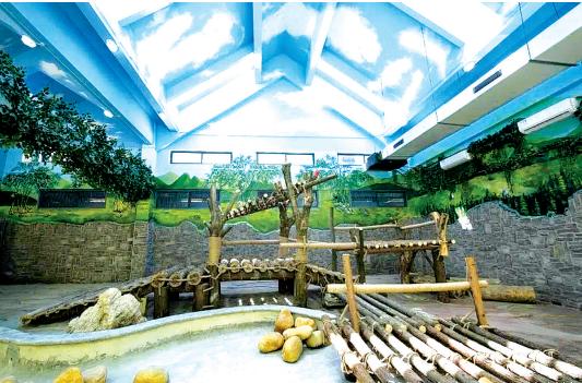 黔灵山公园大熊猫馆室内展厅(图片来自成都大熊猫繁育研究基地官方微博)