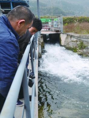 洋水河流域3年治理总磷含量下降40倍