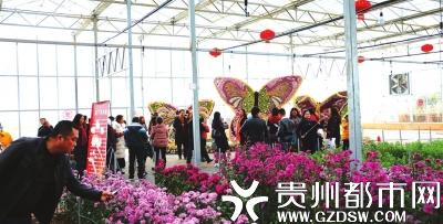 好花红乡村旅游·兰花艺术节·花卉苗木展。