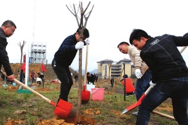 贵州互联网+全民义务植树活动昨日种树17万余株