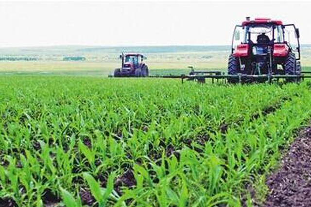 利用春耕生产时机 贵阳将减种32万亩玉米