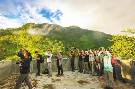 海南划定琼岛陆地近1/7面积设立热带雨林国家公园