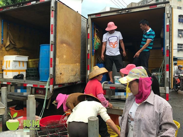 东门市场海鲜货车凌晨送货 居民受到噪音干扰难入睡