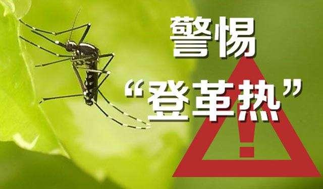 提醒!海南近期气象条件利于伊蚊幼虫孳生繁殖 注意防蚊灭虫