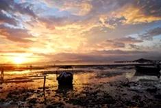 打卡三亚渔村美食与美景同框